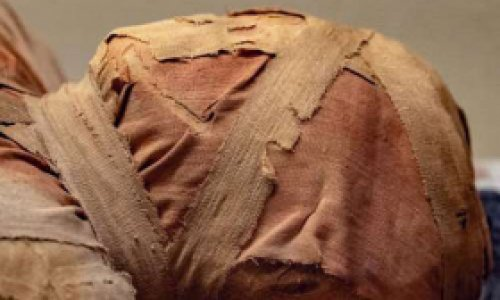 Раскрыта тайна трех мумий…