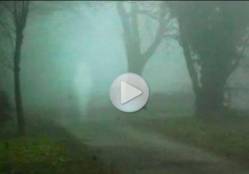 Фото подборка приведений и призраков 2013