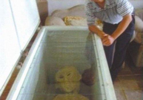 Труп пришельца довел китайца до тюрьмы