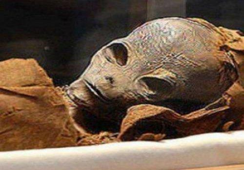 В египетской гробнице была обнаружена мумия пришельца