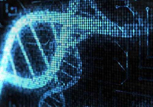 Ученые создали компьютер, основанный на ДНК