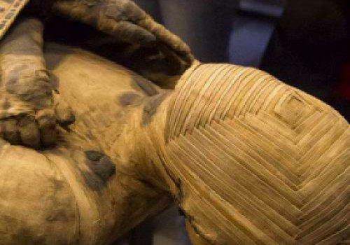 Археологи в Египте нашли…