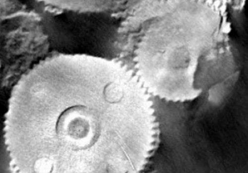 В России нашли механизм возрастом в 400 млн. лет
