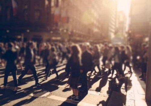 Мнение толпы губительно влияет на мудрость человека