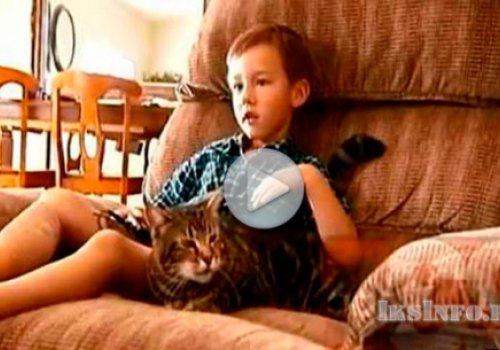 Кошка спасла ребенка