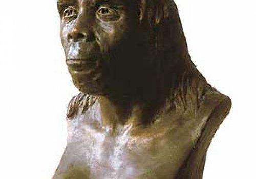 Древний человек