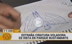 В Bustamante Park на видео попало неизвестное существо