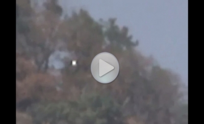 Шарообразная плазма над лесом в Мексике